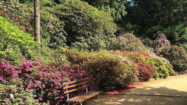Botanischer Garten Potsdam Ausflugsziele Auf Visityde